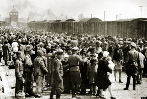 Was The final solution NECESSARY? - Final solution